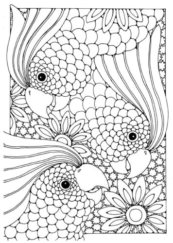 Coloring page cockatoo