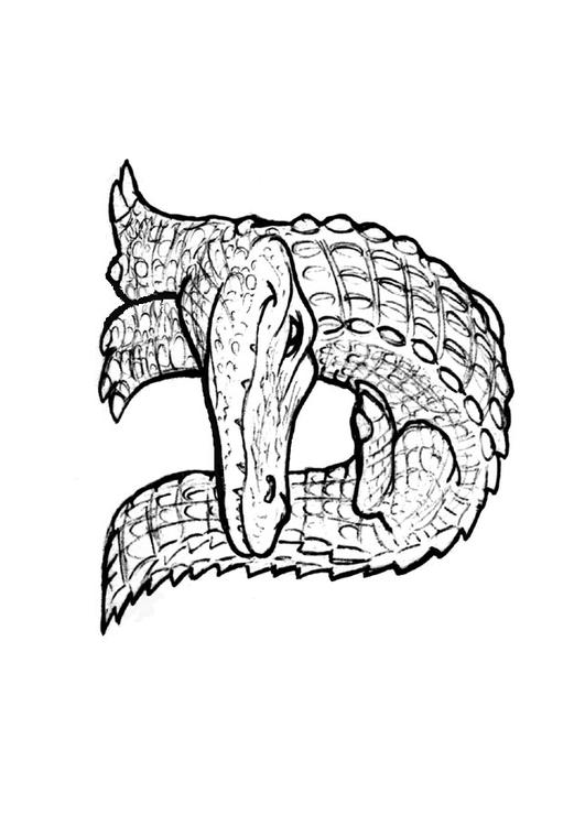 Coloring page a-alligator - img 24829.