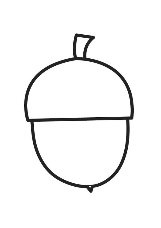 Coloring page Acorn