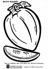 Coloring page acorn squash