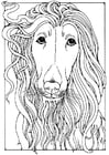 free coloring pages of afghans hounds | 90 Best Dog Coloring Pages - 2019 Free Printable Coloring ...