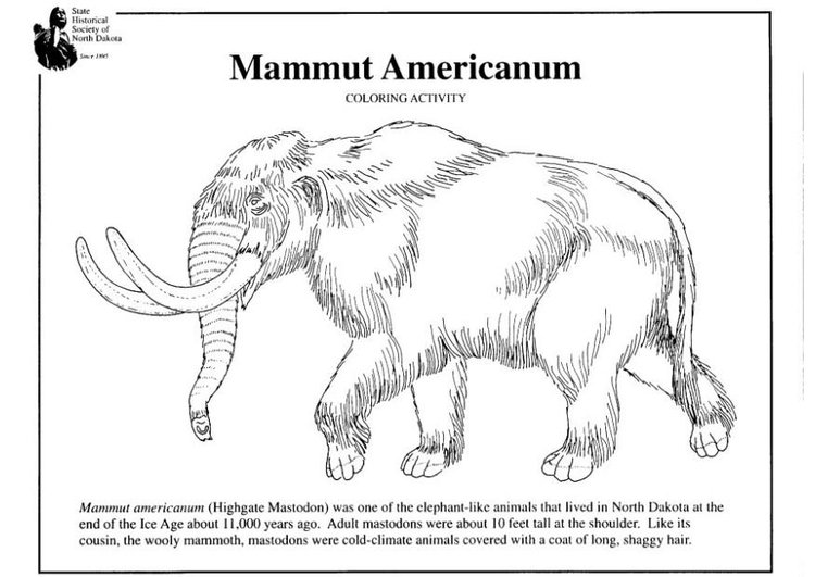 Coloring page American mammoth
