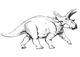 Coloring page anchiceratops