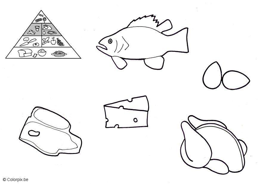 Coloring page animal products img 5673 - Piramide alimenticia para colorear ...