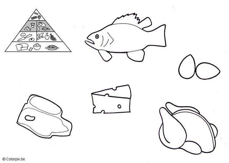 Coloring page animal products