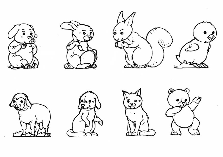 Coloring page animals - collection