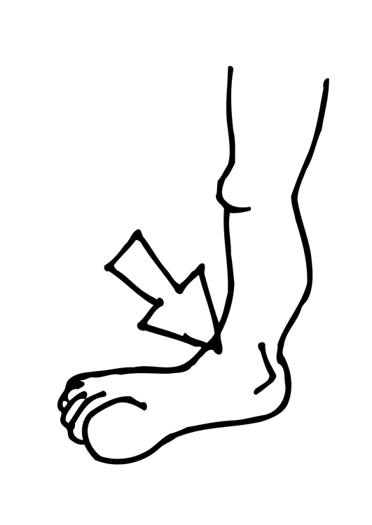 Coloring page ankle