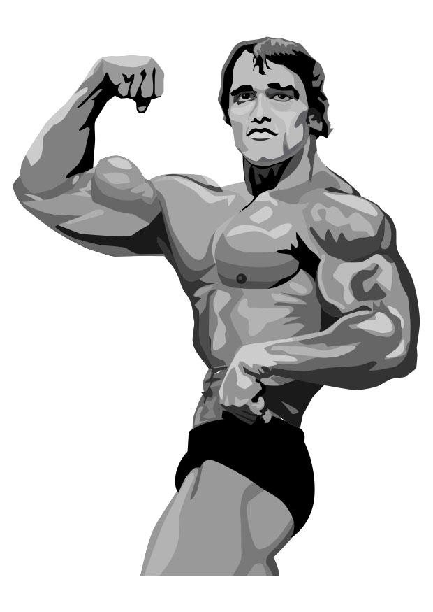 Coloring page arnold schwarzenegger img 29646 download large image malvernweather Gallery