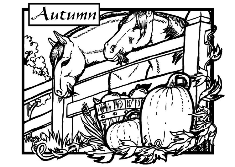 Coloring page autumn - horses