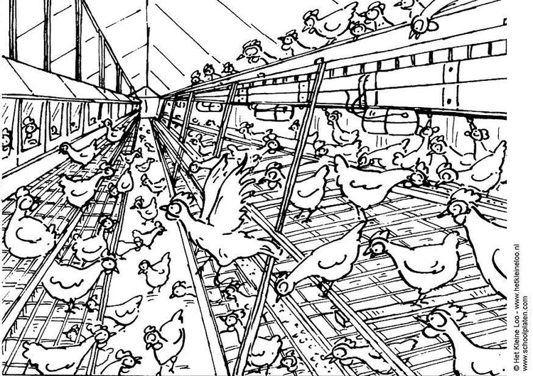 Coloring page aviary cage