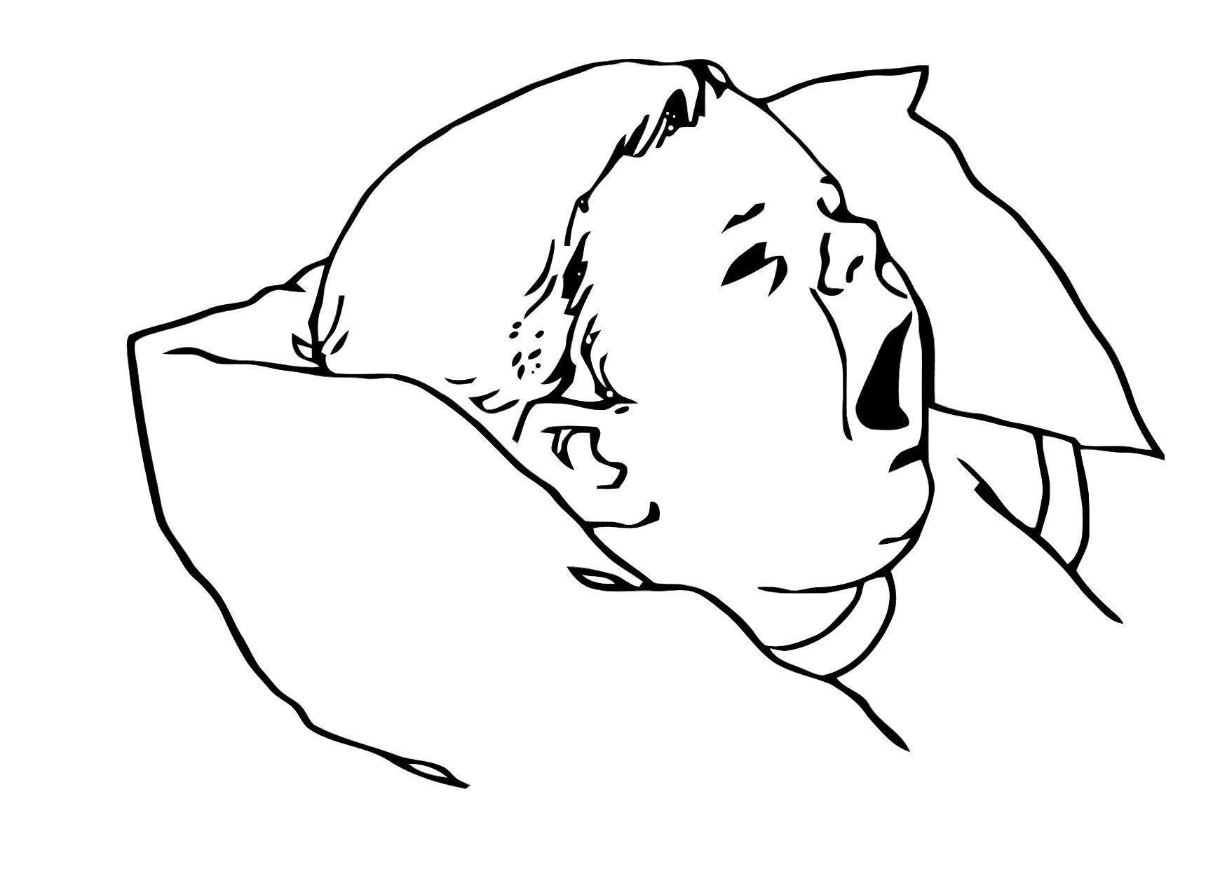 Coloring page baby - img 11890.