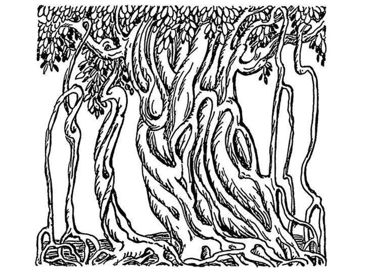 Coloring page banyan tree