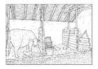 Coloring pages barn