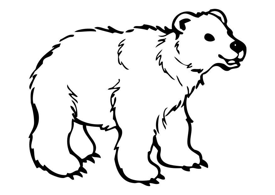 Coloring page bear - img 10262.