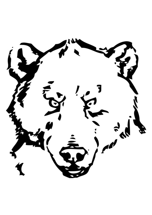 Coloring page bear 39 s head img 19387 for Bear head coloring page