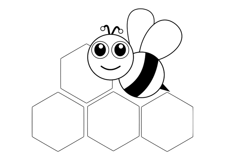 Coloring page bee - front