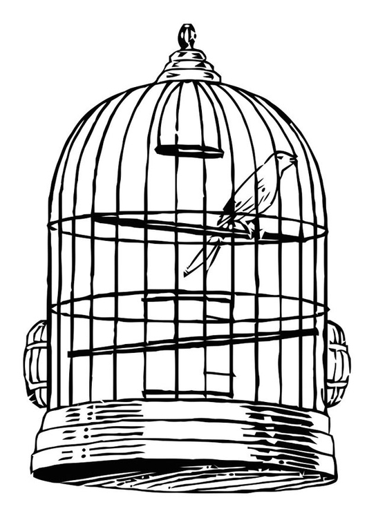 Coloring Page Bird In A Cage