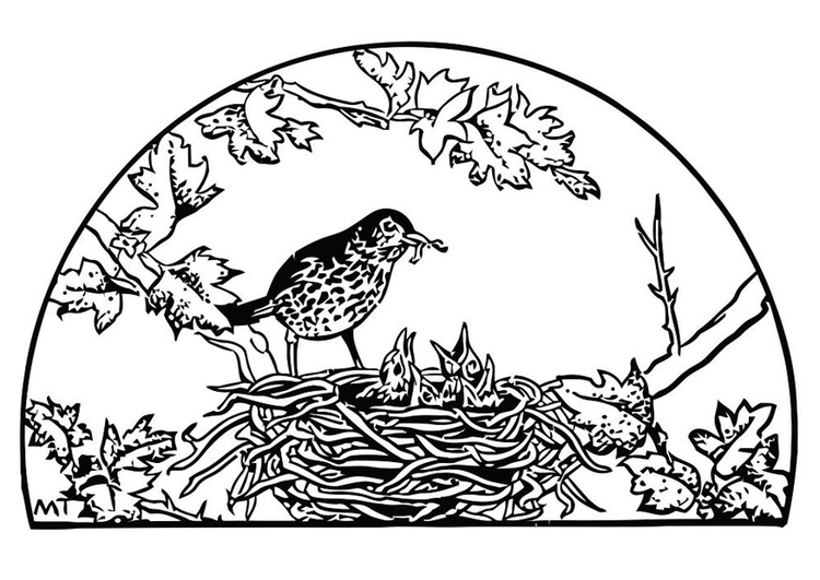 Coloring page bird's nest