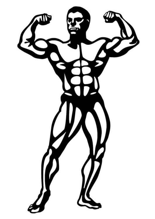 Coloring page body building