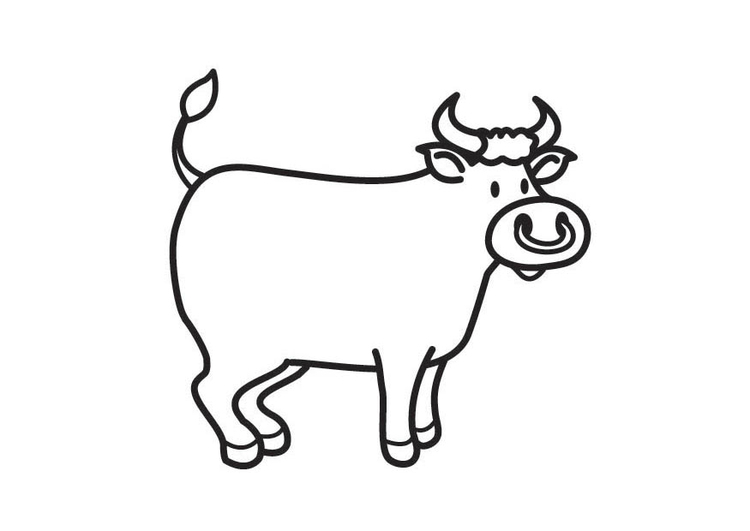 Coloring page Bull