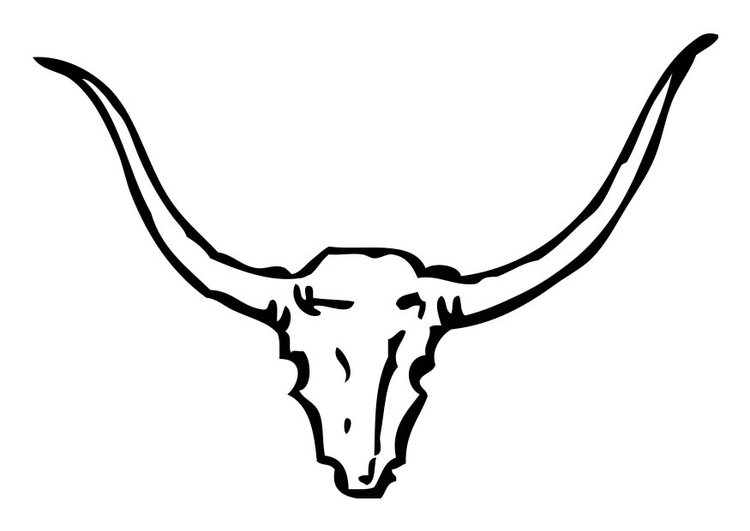 Coloring page Bull Horns