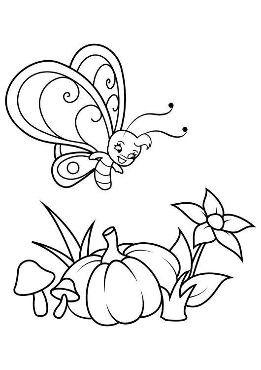 Coloring page butterfly above flower and pumpkin