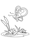 Coloring page butterfly above water lilies