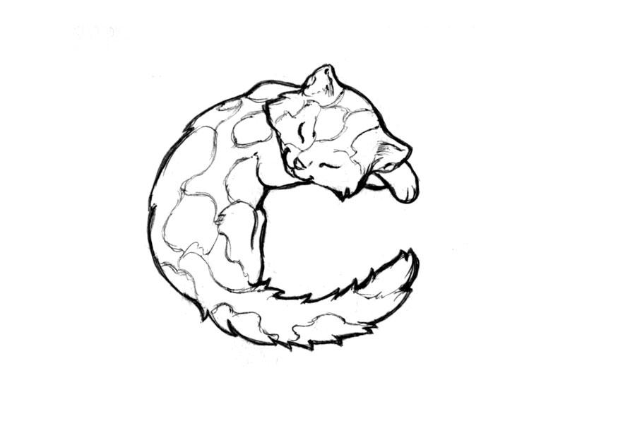 Coloring Page C Cat