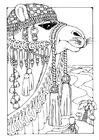 Coloring pages Camel