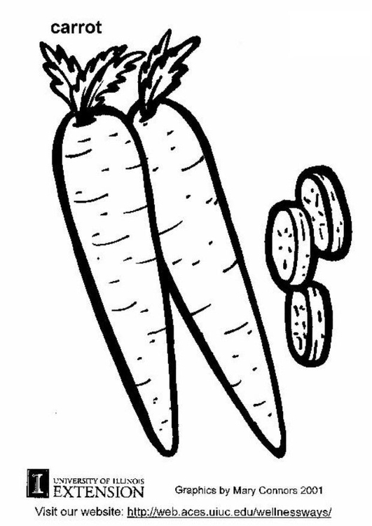 Coloring page carrot