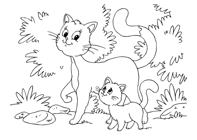 Coloring page cat and kitten