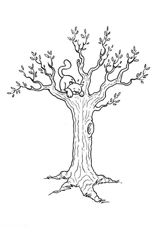 coloring page cat in tree  free printable coloring pages