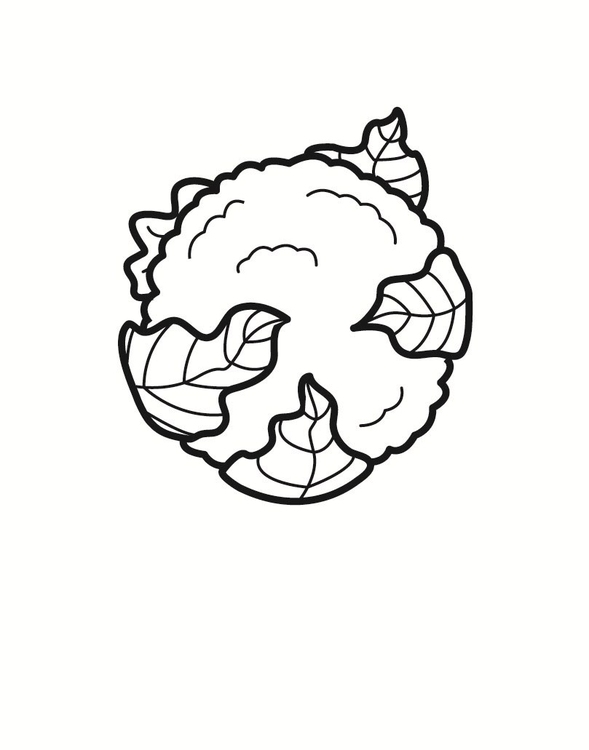 Coloring page cauliflower