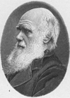 Coloring pages Charles Darwin
