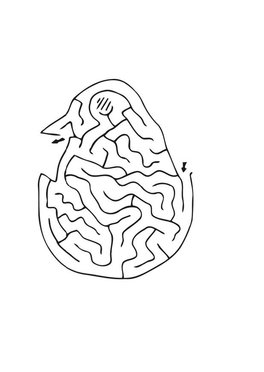 Coloring page chick maze