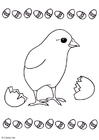 Coloring pages chicken
