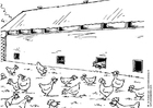Coloring page chicken stable