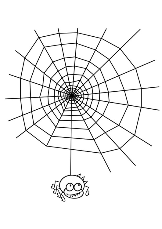 Coloring page cobweb with spider