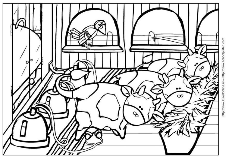 Coloring page cow 4
