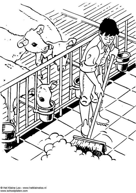 coloring page cow stable