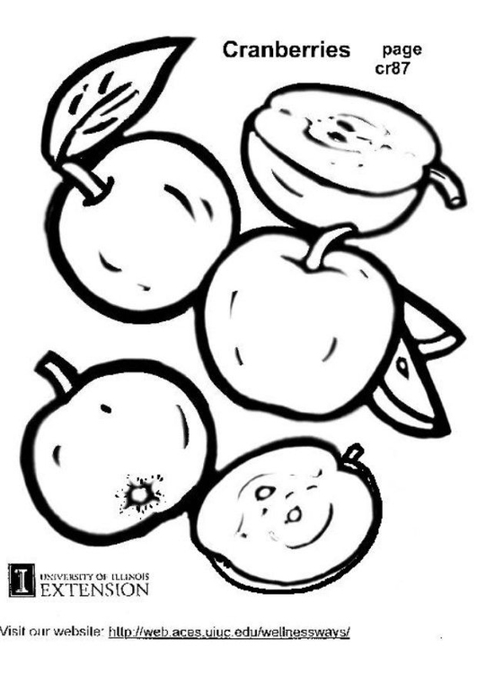 Coloring page cranberries