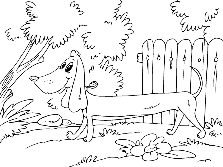 Coloring page dachshund