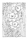 Coloring pages daffodil