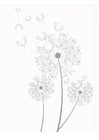 Coloring pages dandelions