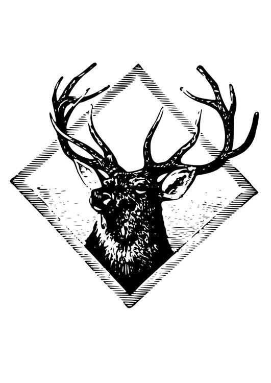 Coloring Page deer antlers - free printable coloring pages ...