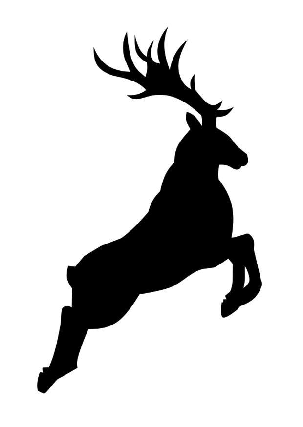 Coloring Page Deer Img 27137