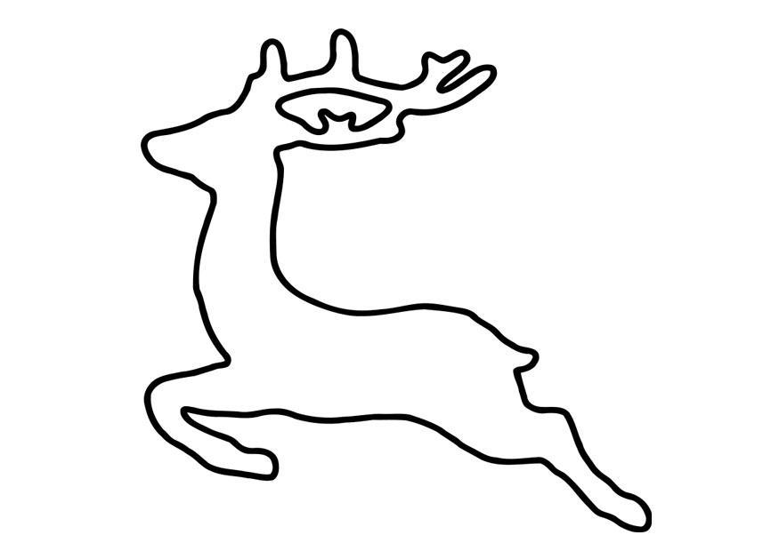 Kleurplaat Dieren Eenvoudig Coloring Page Deer Free Printable Coloring Pages