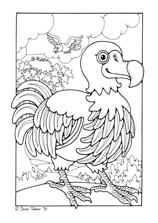 Coloring Page Dodo