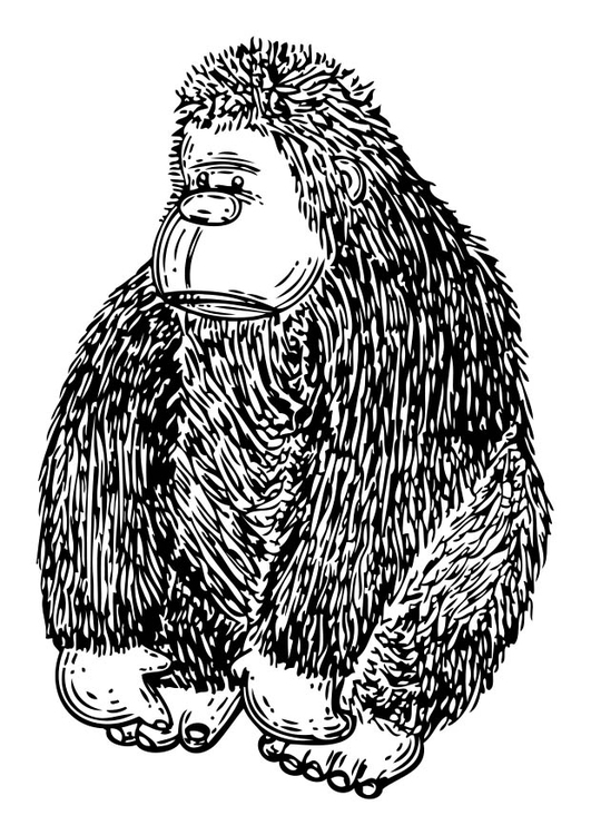 Coloring page Doll - Gorilla