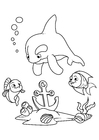 Coloring pages dolphin and fish with anchor